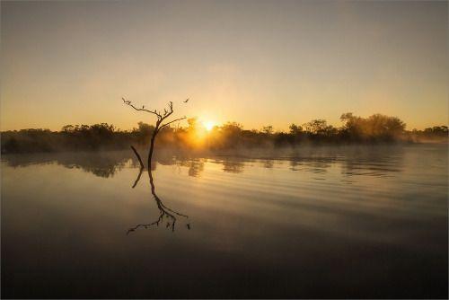 euph0r14:  nature   Zimbabwe morning   by Irca  ...