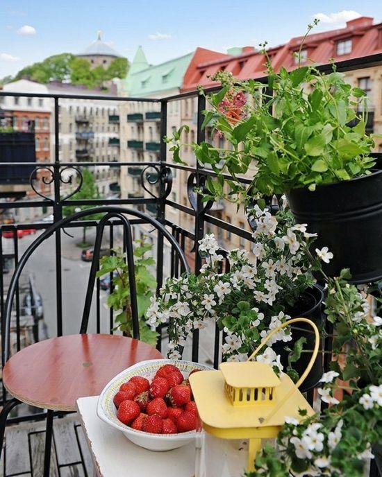 Balkon Blumenkasten Geländer Erdbeeren Tisch Balkon Pinterest - balkon ideen blumenkasten gelander