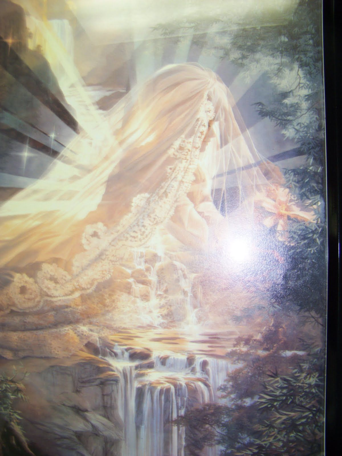 On Wings Like A Dove: Bride in Intercession   Bride of christ, Pictures of christ, Prophetic art