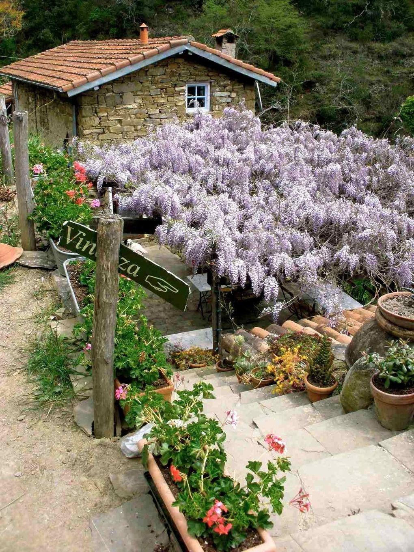 Vinazza! Vakantie in Italië Agriturismo Italian