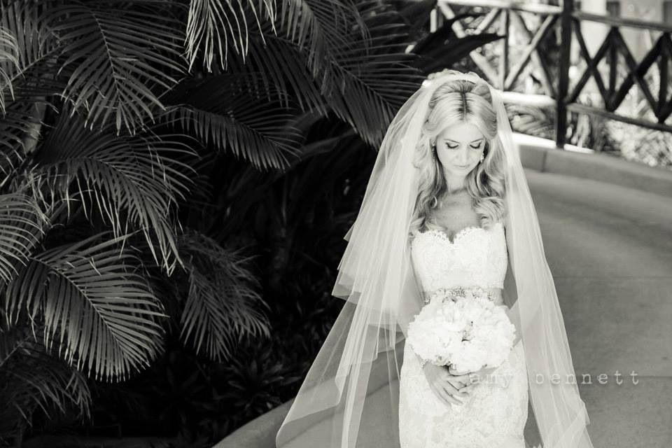 Lazaro Gown & Cathedral Veil. Wedding Gown.