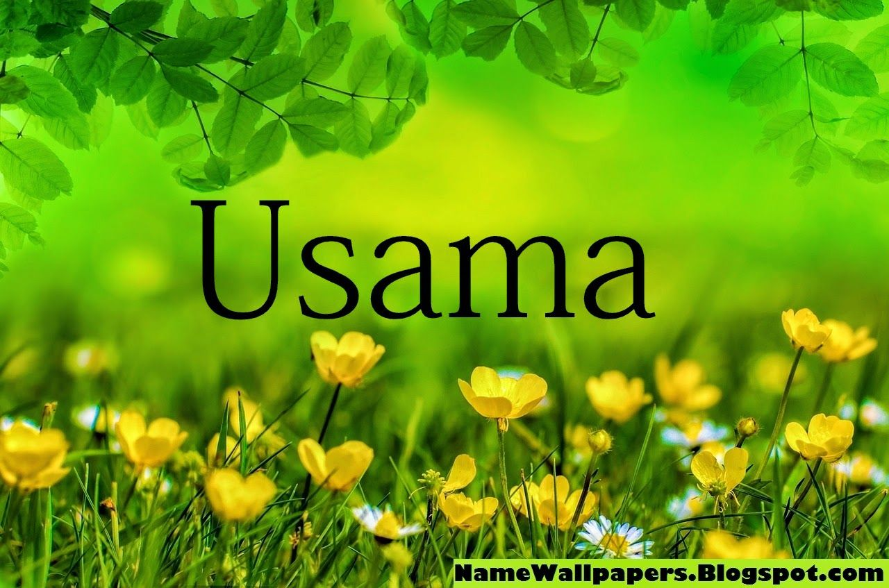 Usama Name Wallpapers Osama Name Wallpaper Urdu Name Meaning