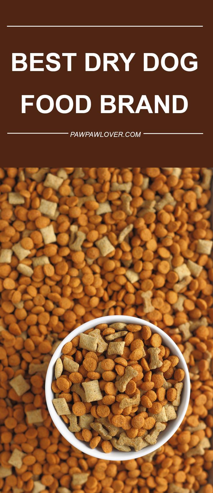10 Best Dog Food Brands (Dry & Canned) 2020 Dog Food