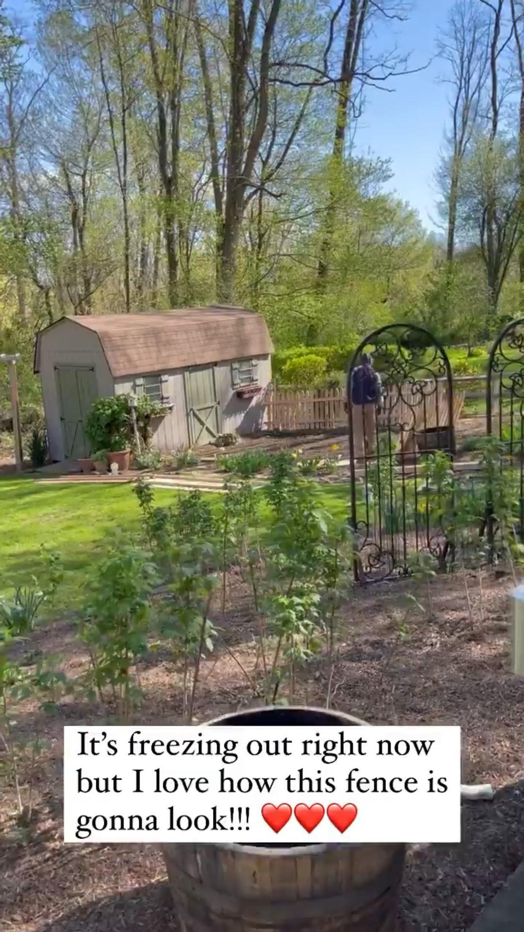 Garden Ideas – Fence and Borders in the Backyard Garden