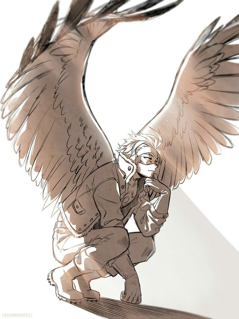 Hawks Is Literally The Best Thing That S Happened To This Fandom