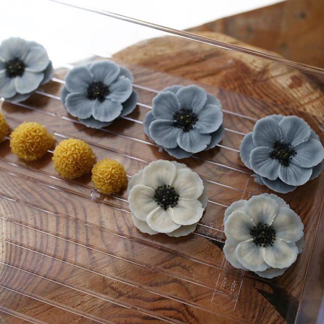 Anemone #ricecake #maisonolivia #whitebeanpast #whitebeanpasteflower #koreaflowercake #korearicecake #flowercake #플라워케이크 #플라워케익 #대구플라워케이크 #메종올리비아 #앙금플라워떡케이크 #앙금플라워케익 #앙금플라워케이크