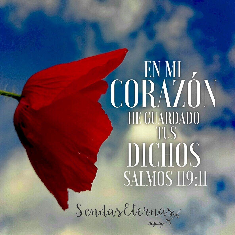 """Versiculos De La Biblia De Fe: VERSICULO BIBLICO """"En Mi Corazón He Guardado Tus Dichos"""