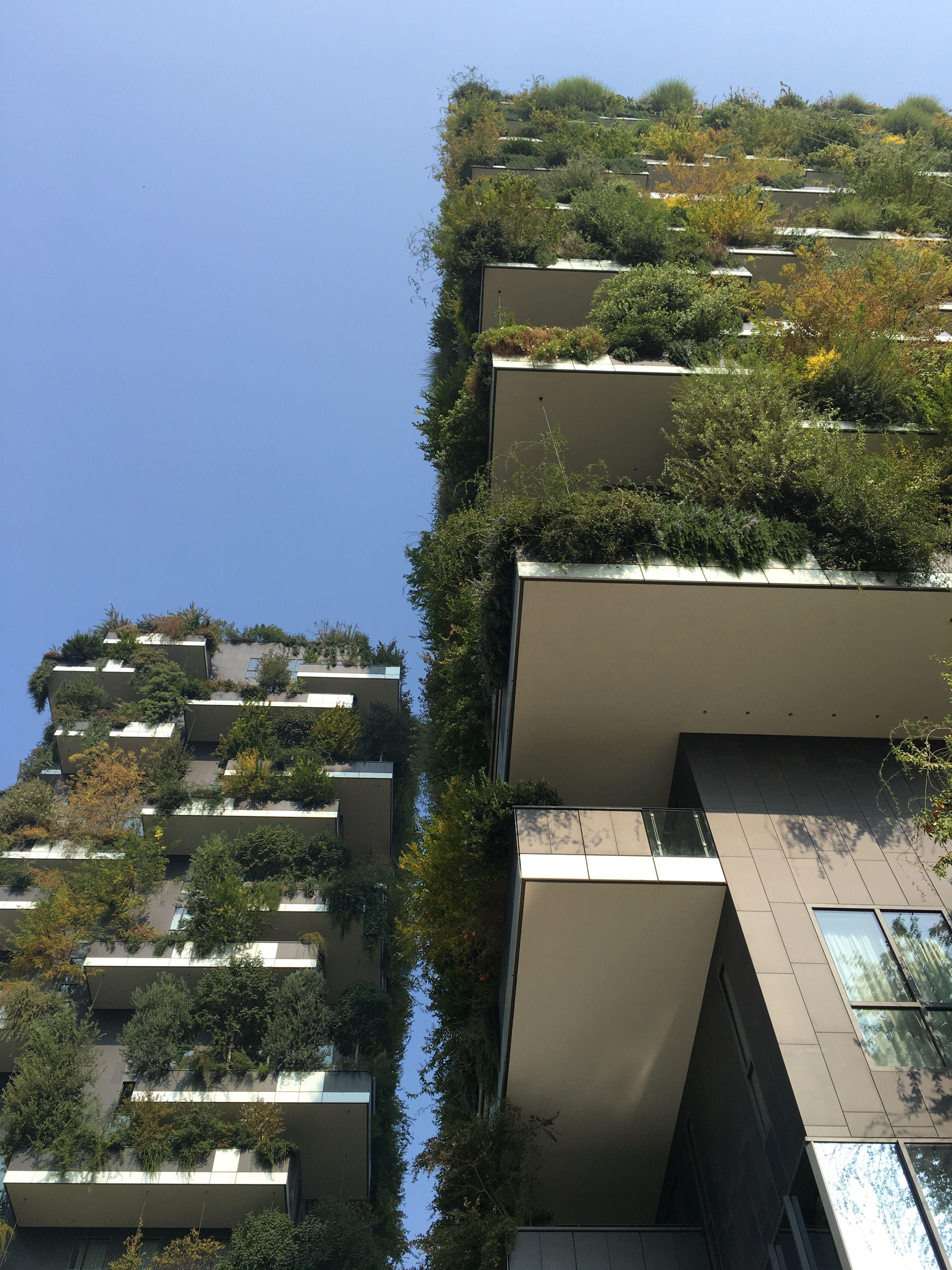 Project Bosco Verticale Architecture Boeri Studio (Arc Boeri, Arc Barreca