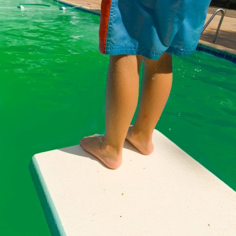 How to remove algae from a salt water pool eric mullis check this out pinterest salt How to maintain swimming pool water