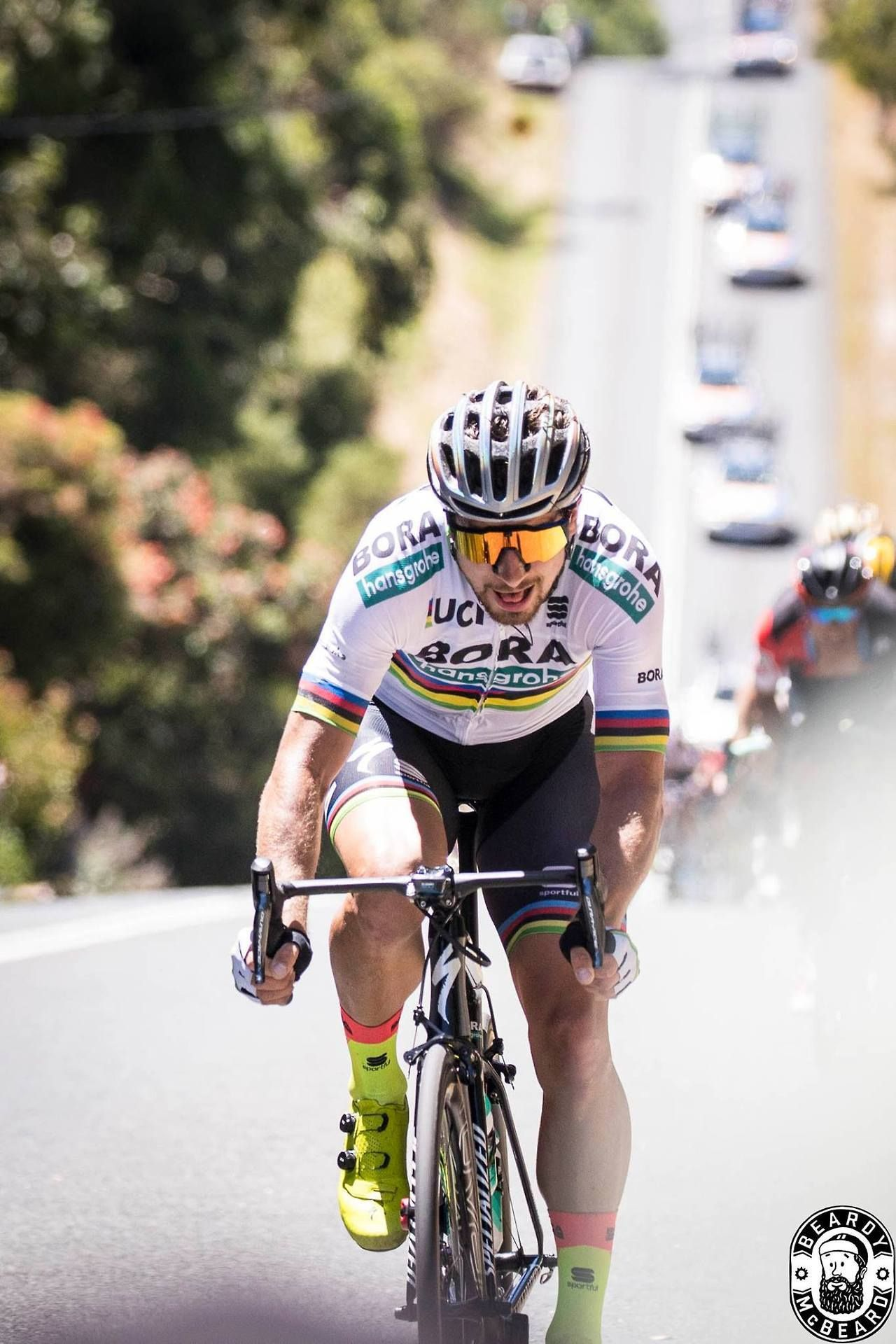 Peter Sagan Stage 4 Tdu 2018 Photo Credit Beardy Mcbeard