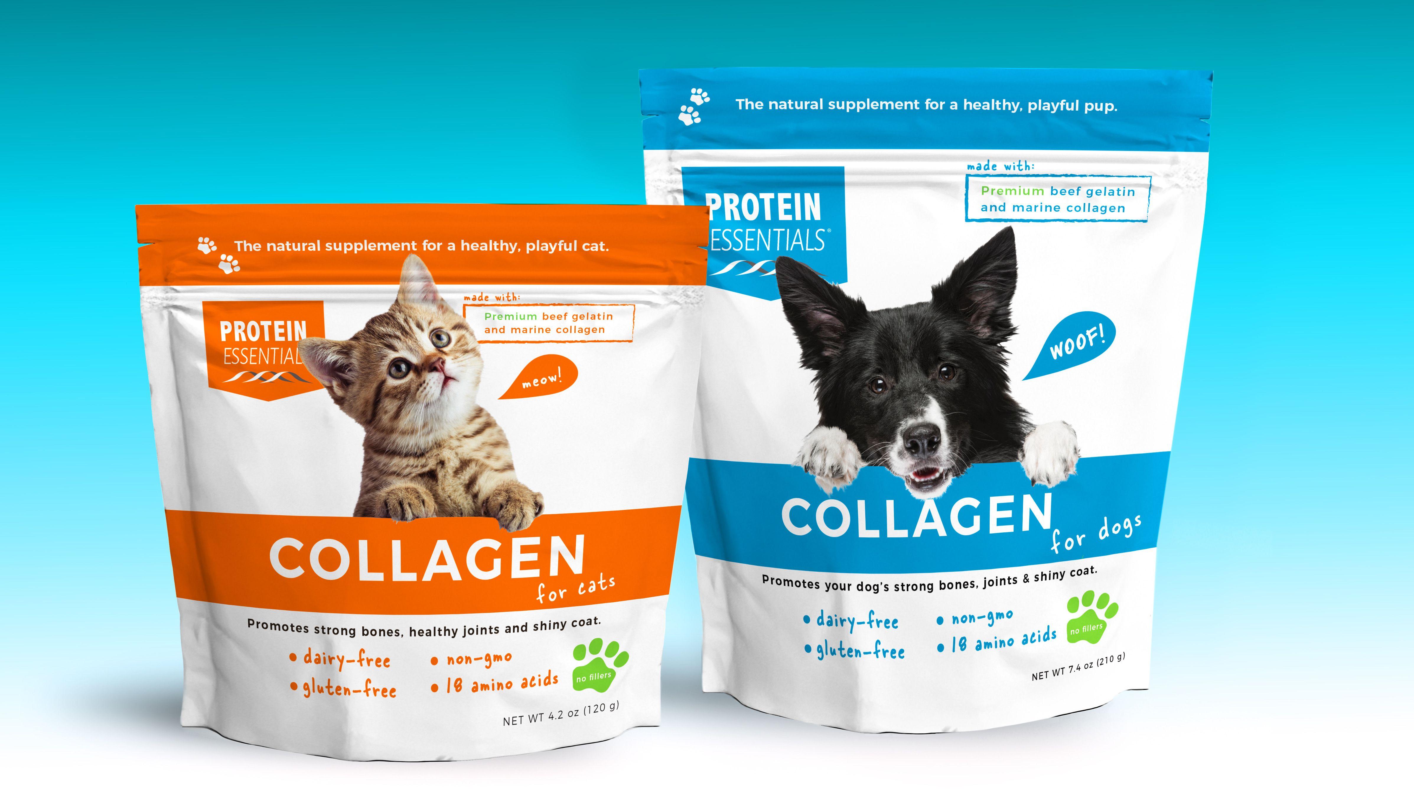 Collagen for your pets collagen pet diet healthy bones