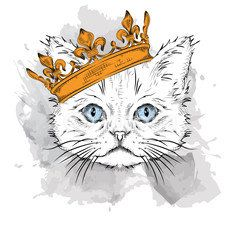 Photo of Hand draw Image Portrait cat  in the crown. Use for print, posters, t-shirts. Ha…