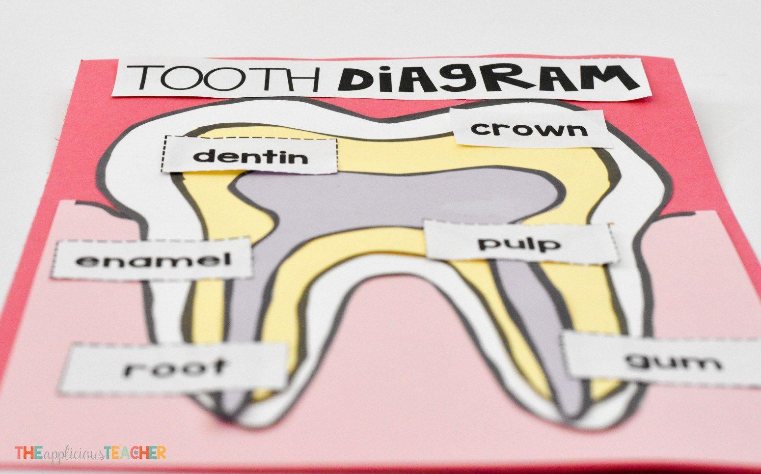 Dental Health In The Kindergarten Classroom