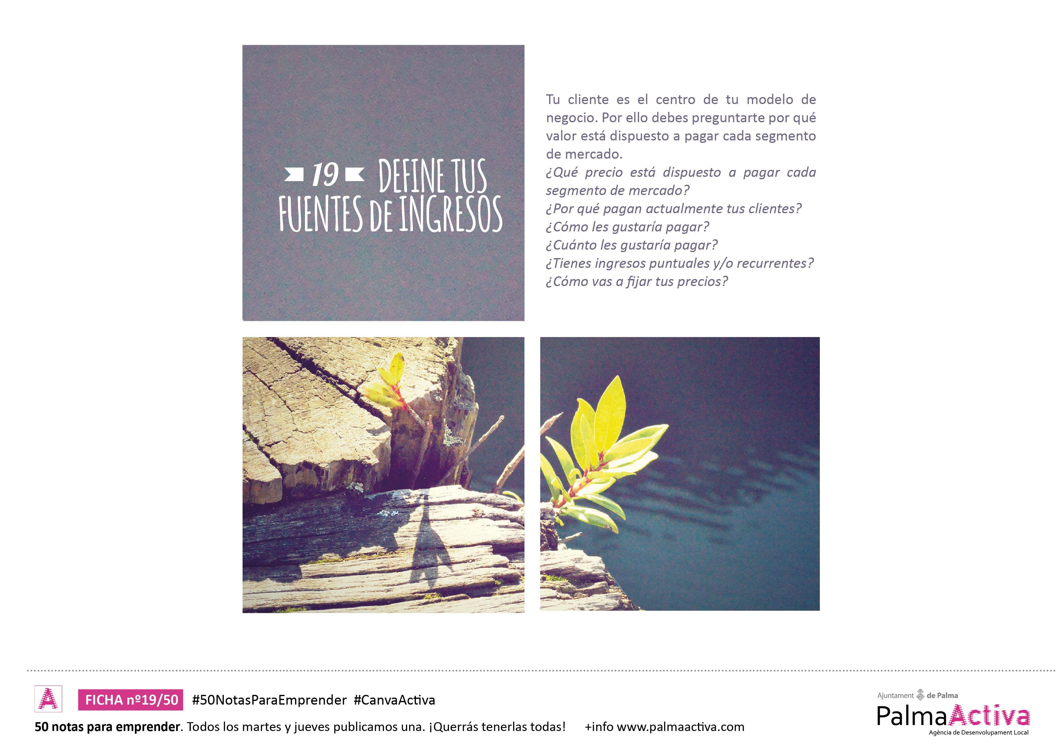 19/50 50NotasParaEmprender DEFINE TUS FUENTES DE INGRESOS