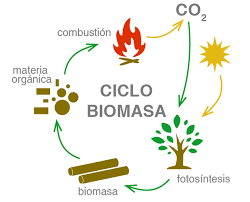 Resultado De Imagem Para Energia Biomasa Imagenes De La Energia Energia Renovable Energia De Biomasa