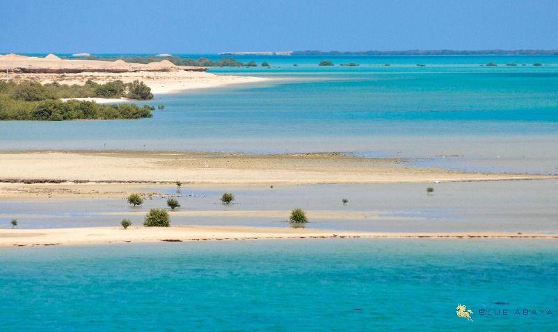 The Farasan Islands Wanderlust In Saudi Arabia Cool Places To Visit Places To Visit Saudi Arabia Tourism
