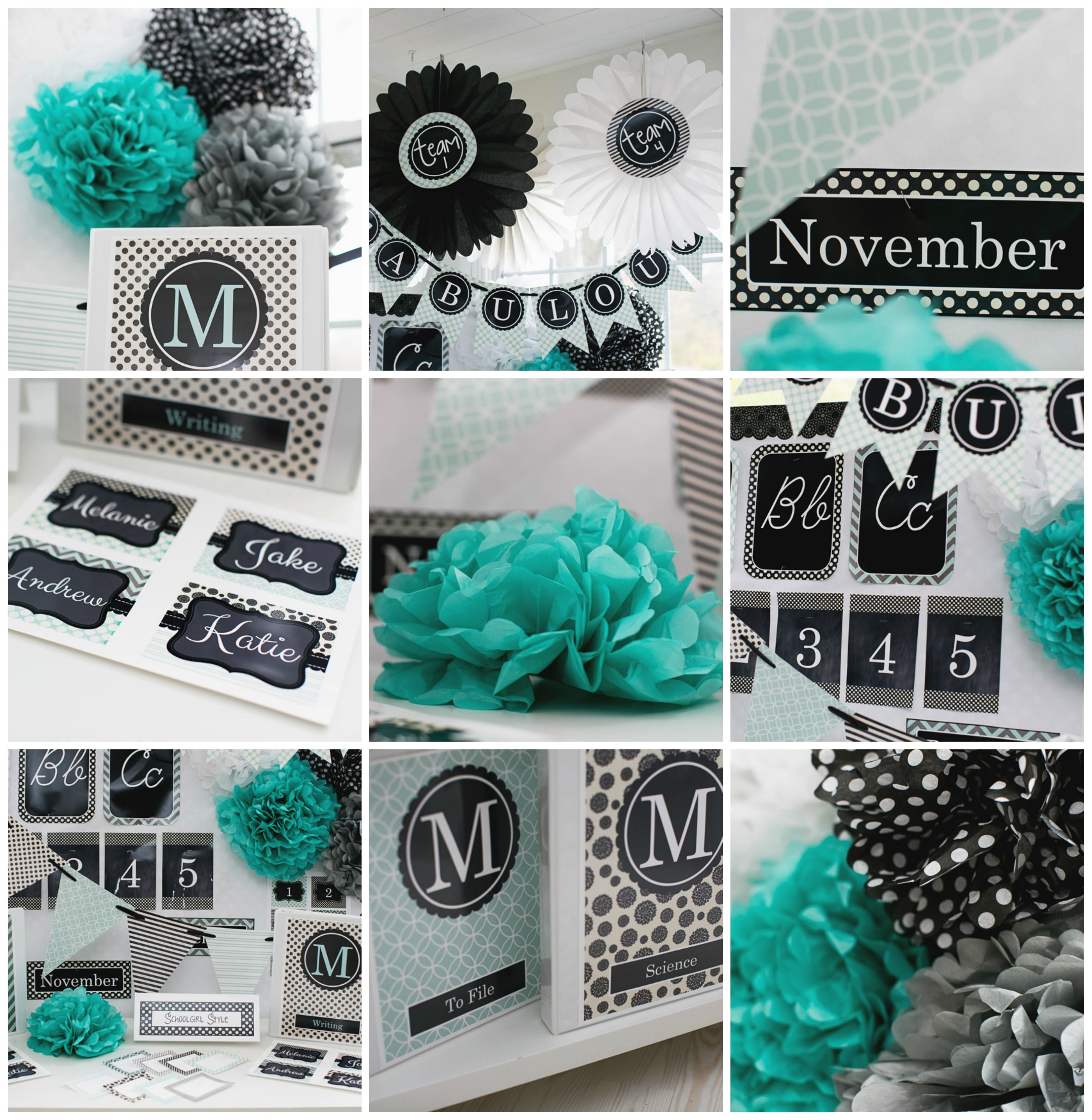Turquoise Black Gray Clroom Theme And Decor By School Style