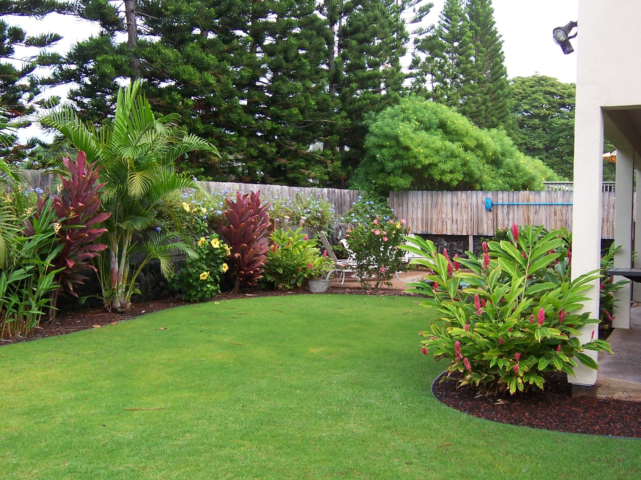 Best Of Tropical Landscaping Ideas for Backyard