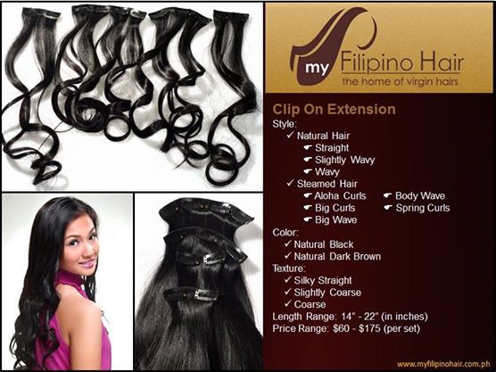 Clip on hair extensions our clip on hair extension is 100 virgin clip on hair extensions our clip on hair extension is 100 virgin filipino hair that solutioingenieria Choice Image