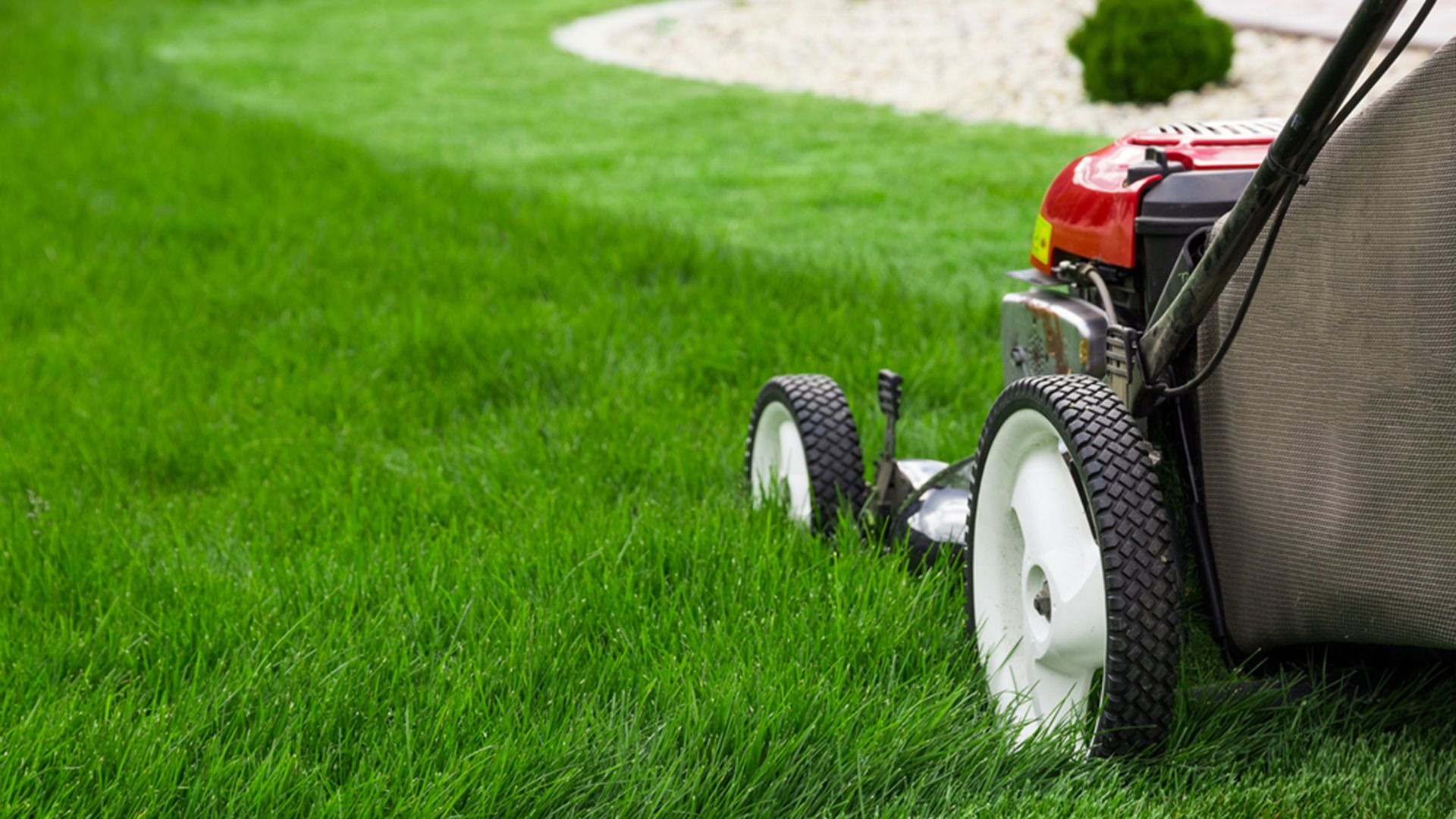 4 Things You Can Do To Care For Your Yard