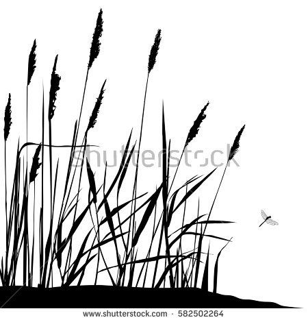 Reed and flying dragonfly during sunny day - vector illustration. Wild live