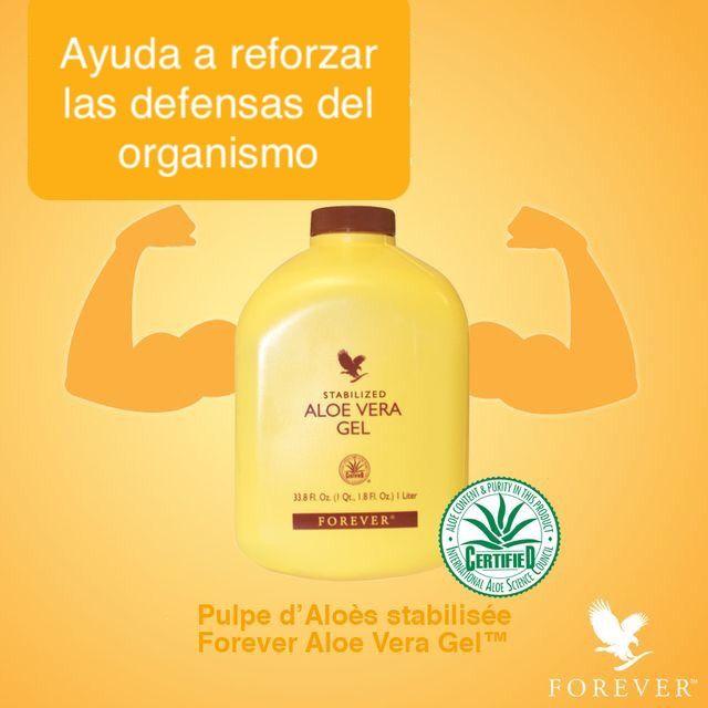 Ayuda A Mantener Y Mejorar Tu Sistema Inmune Sistema Digestivo Desintoxicar Tu Hígado Y Colon Aloe Forever Aloe Aloe Vera Gel Forever Forever Living Products