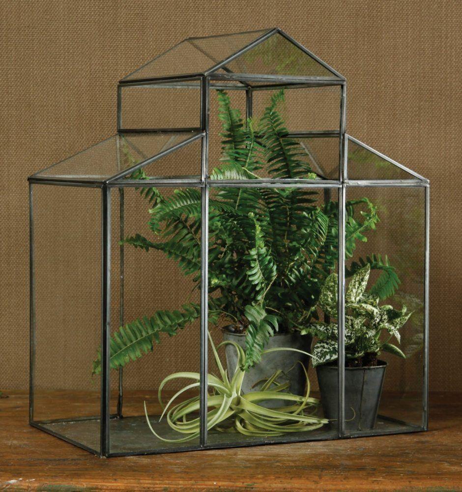 Amazon Com Pierre Decorative Greenhouse Portable 400 x 300