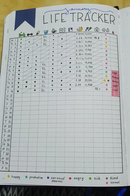 I think I found the life tracker that I really lik