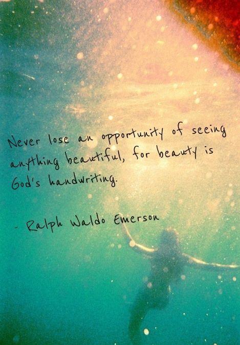 Never lose an opportunity of seeing anything beautiful.