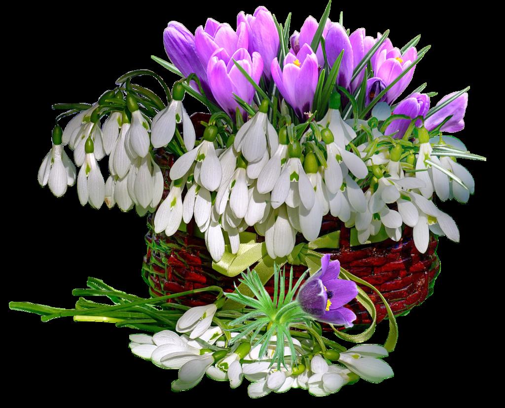 Открытки с днем рождения весенние цветы необычные жуткие