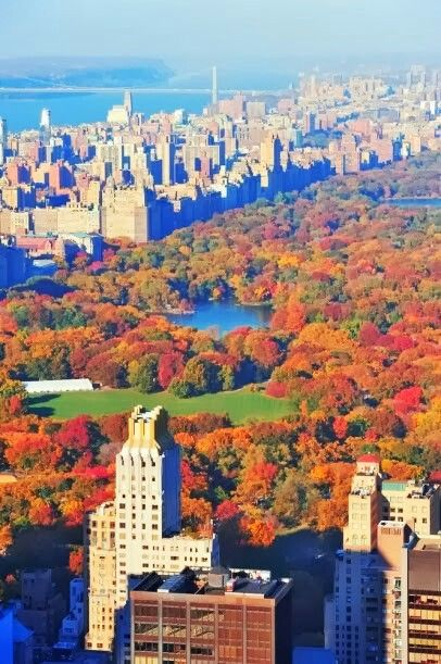 Central Park, NYC. ***