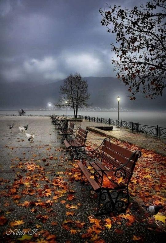 Untitled   Осенний пейзаж