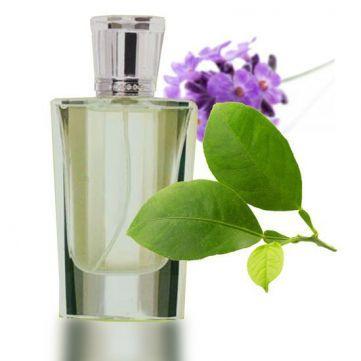 588933ed47e73 Contratipo de Hombre nº5 para hacer perfumes. Esta esencia está en  consonancia olfativa con Eternity · Calvin KleinSexy ...