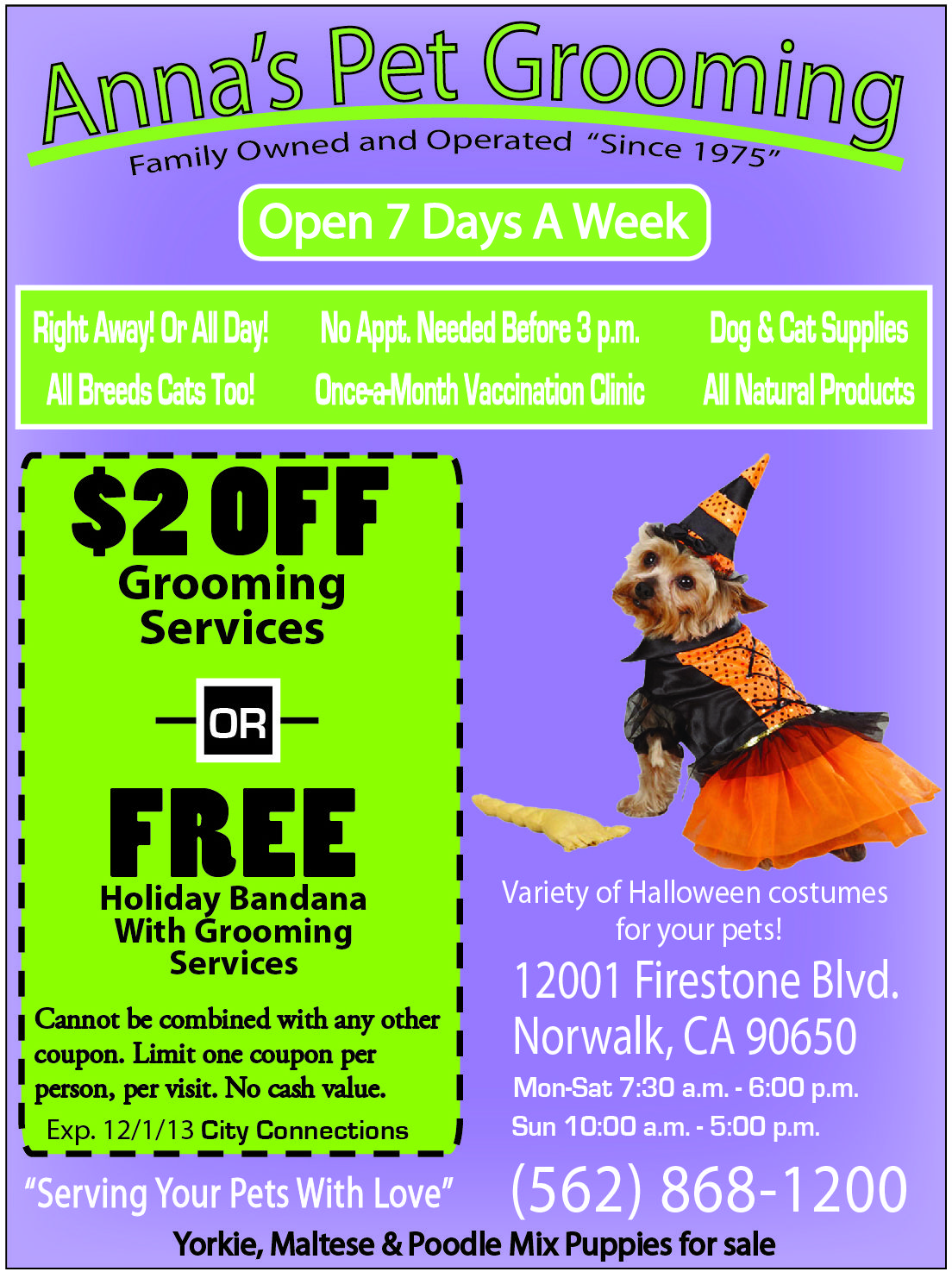 Serving Your Pets With Love Anna S Pet Grooming In Norwalk