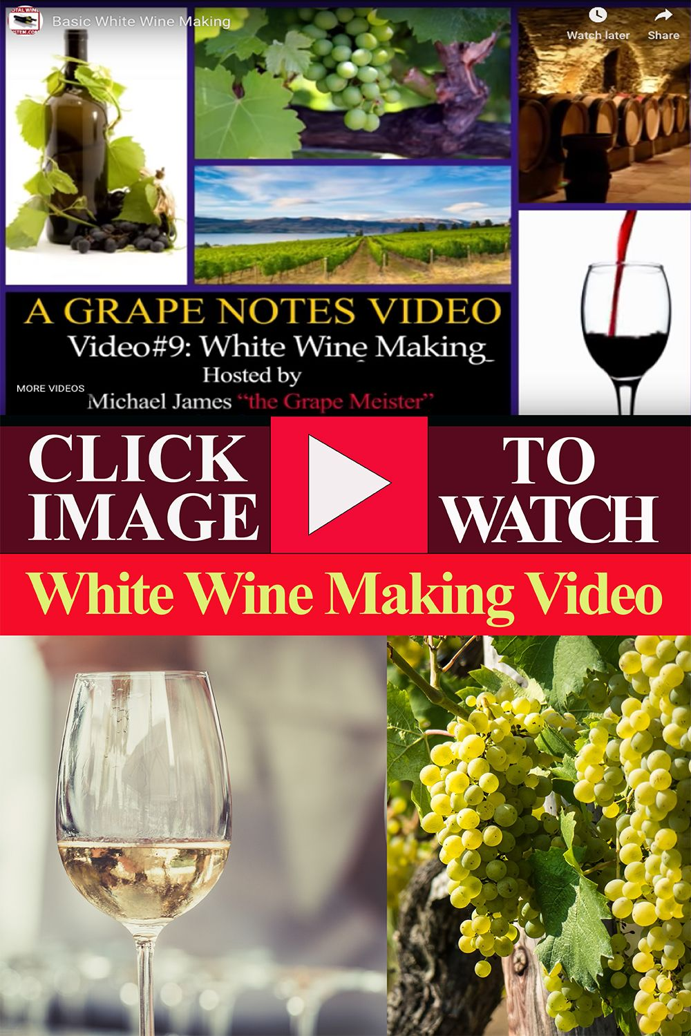 White Wine Making White Wine Wine Making Winemaking