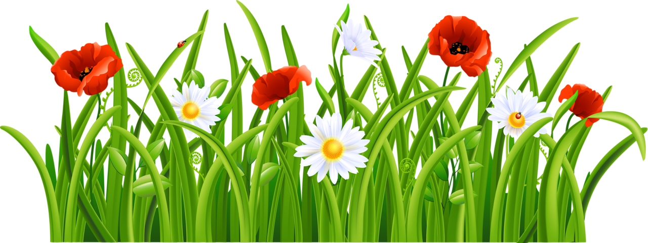 grass with flowers and bee png clipart marcos pinterest rh pinterest com clip art of glass half full clipart of glass of water