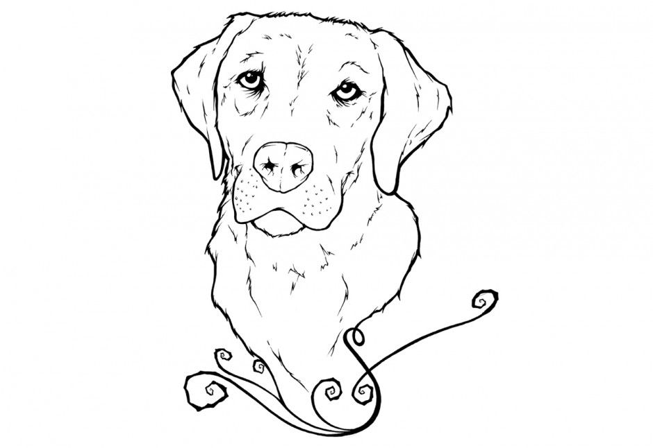 color book pages free lab dog   labrador puppies colouring pages ...