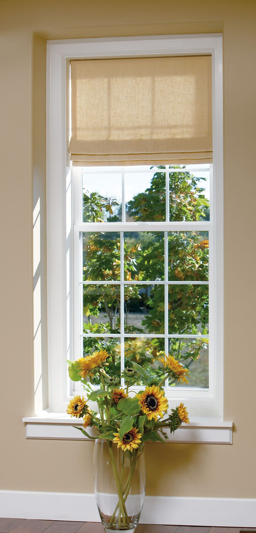 Single Hung Windows Tilt Inward For Easy Cleaning And