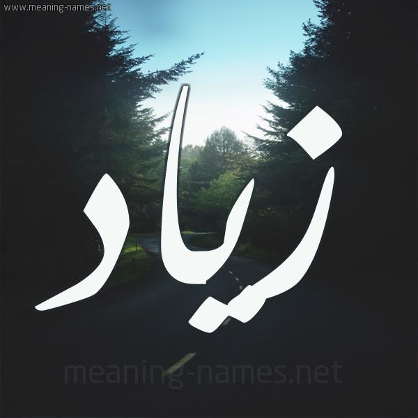 اسم زياد مكتوب علي صور Image Pics Nike Logo
