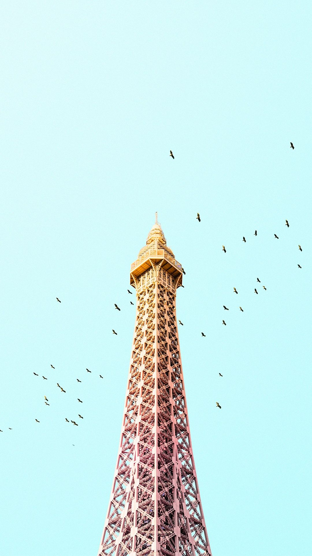 Paris Eiffel Tower Birds Colorful IPhone 6 Plus HD Wallpaper
