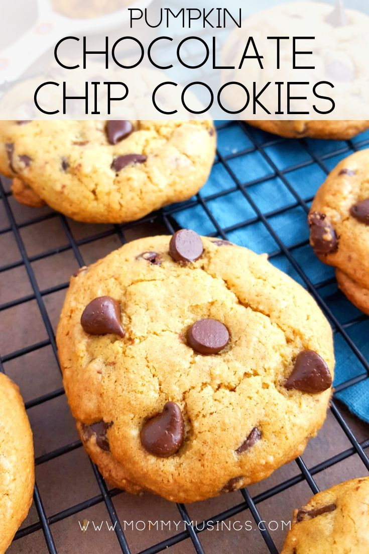 Chewy Pumpkin Chocolate Chip Cookies Pumpkin Chocolate Chip Cookies are chewy, delicious, and perfect for a pumpkin-flavored fall treat…they also happen to be gluten-free!