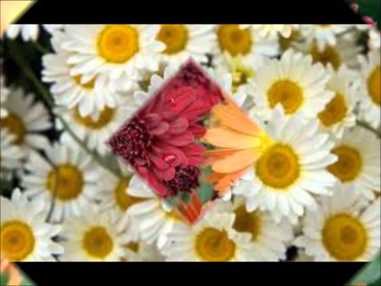Cumple Cumpleaños Feliz cumpleaños ) Happy Birthday song