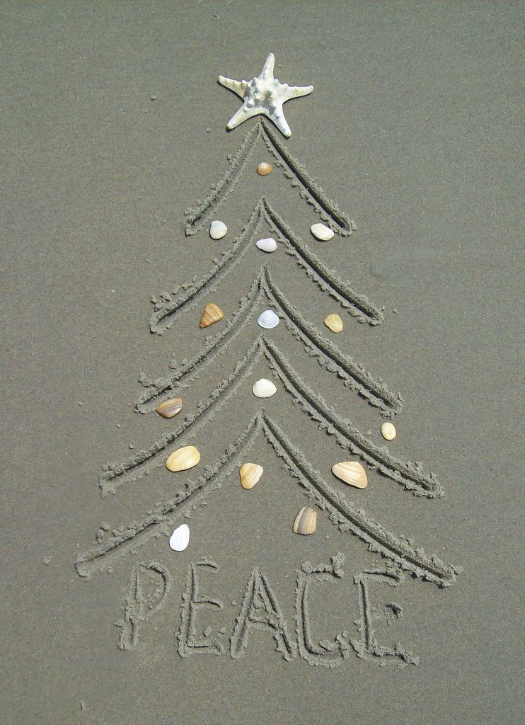 Ocracoke Island Realty 2012 Christmas Card This Photo Was Entered