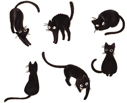Black Cat Illustration Artist Unknown Koshachij Eskiz