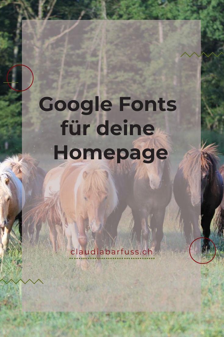 Google Fonts kostenlose Schriften für deine Website