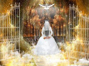 Pure Bride By Dolores Develde Noiva De Cristo Guerreiros De