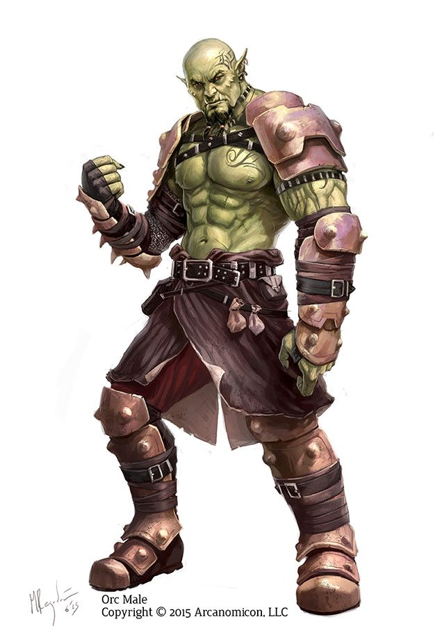 Character Design Kickstarter : Male orc a character design i did for tales of arcana