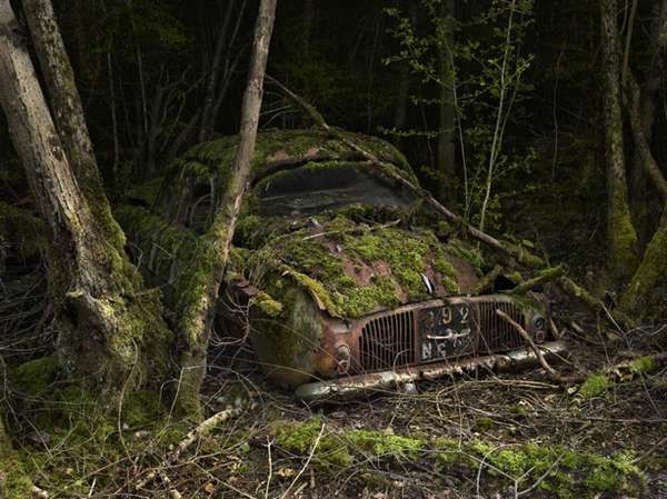 abandoned cars overtaken by nature 10 voitures de r ve voitures abandonn es casse auto et. Black Bedroom Furniture Sets. Home Design Ideas