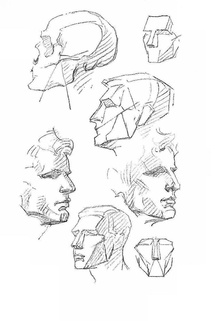Afbeeldingsresultaat voor george bridgman anatomy