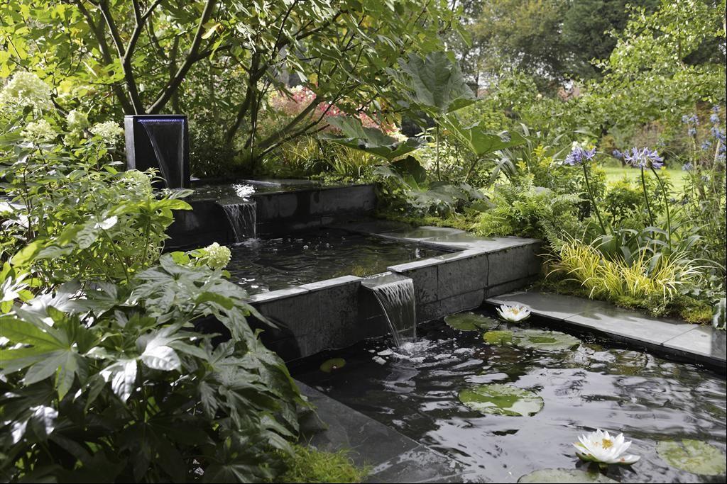 Épinglé par somer af sur jardin | Pinterest | Bassin, Bruit et ...